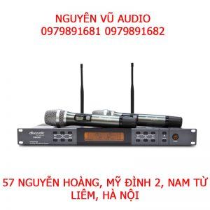 Micro Không Dây dBAcoustic 450II